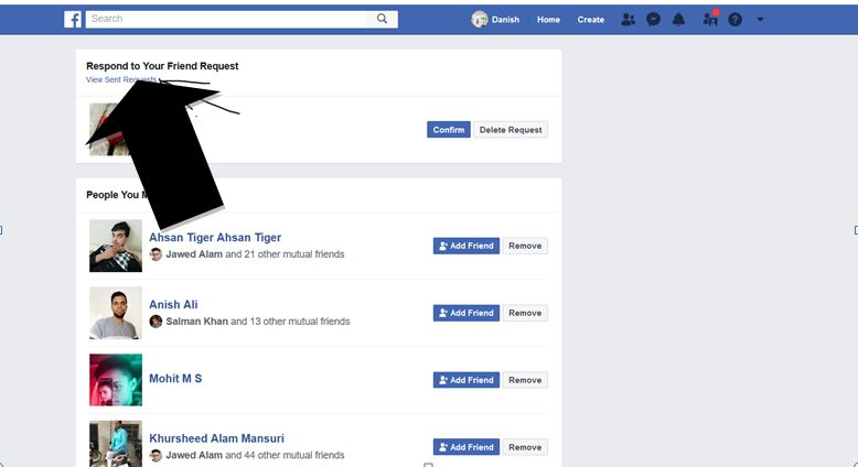 Facebook Sent Friend Requests